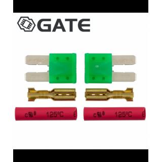 LOT DE 2 MICRO FUSIBLES GATE