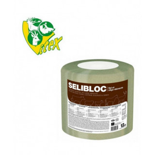 BLOC SELIBLOC VITEX 12KG