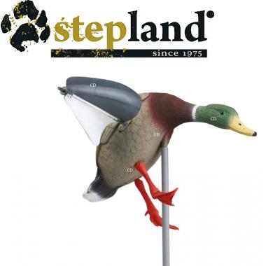 APPELANTS STEPLAND COLVERT...