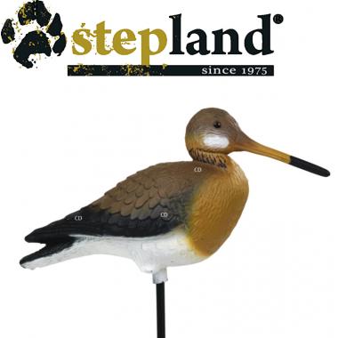 APPELANTS STEPLAND BARGE A...