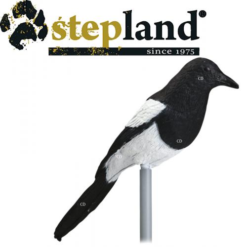 APPELANTS STEPLAND PIE PAR 6