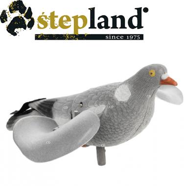APPELANT STEPLAND PIGEON...