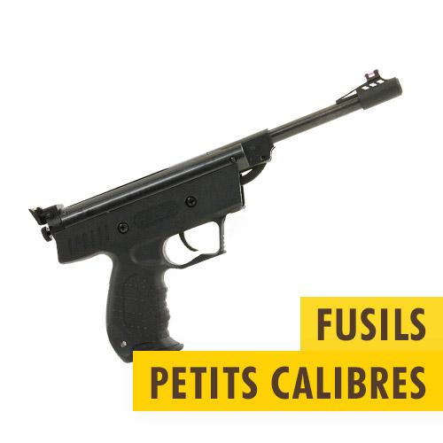 Fusils de tir petits calibres