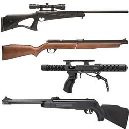 Carabines de jardin 5.5MM et 6,35MM