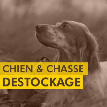 Déstockage Chien et Accessoires Chasse